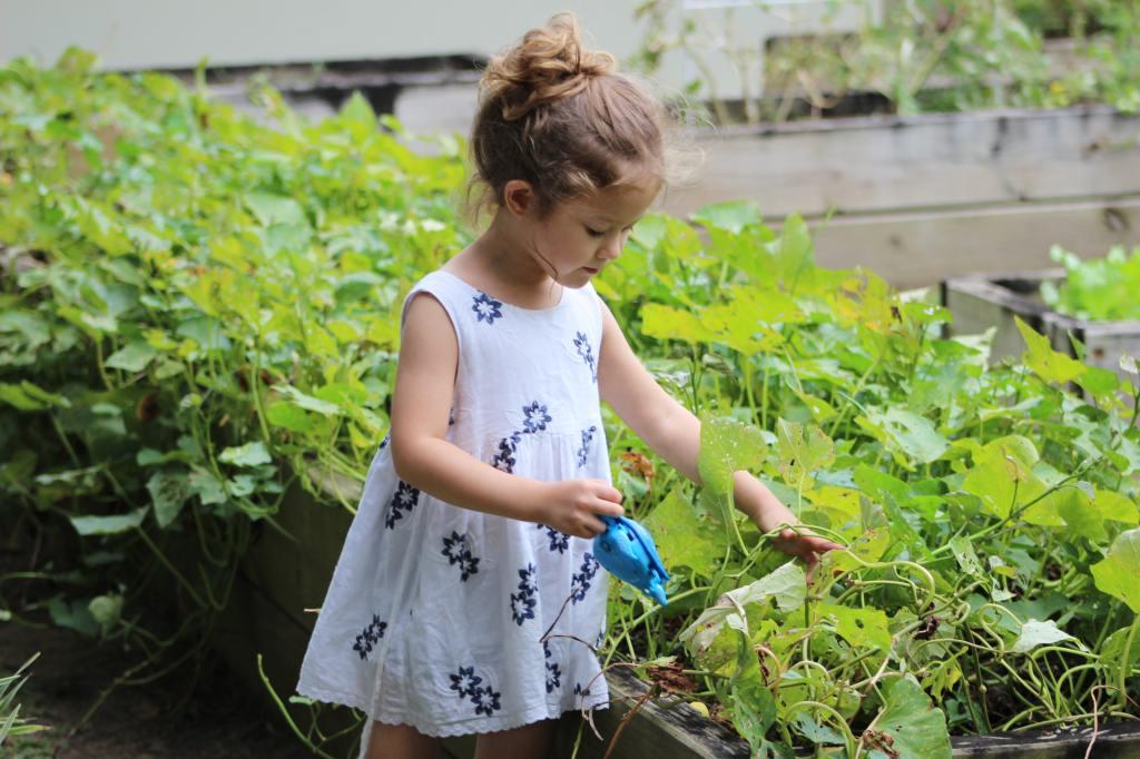 enfant fille jardin potager arrosage pédagogie éducation écologie